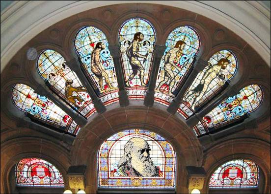 evolution-in-a-church